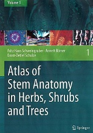 Atlas of Stem Anatomy in Herbs, Shrubs and Trees Volume 1; Schweingruber/Börner/Schulze